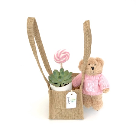 It's A Girl Gift Pack (Small)