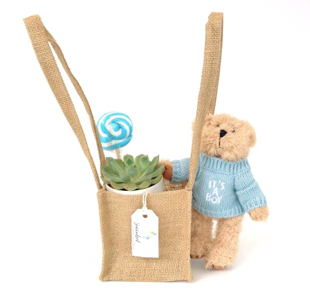 It`s A Boy Gift Pack  (Small)