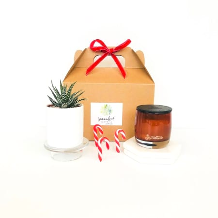 Xmas Mini Succulent and Candle Gift Pack