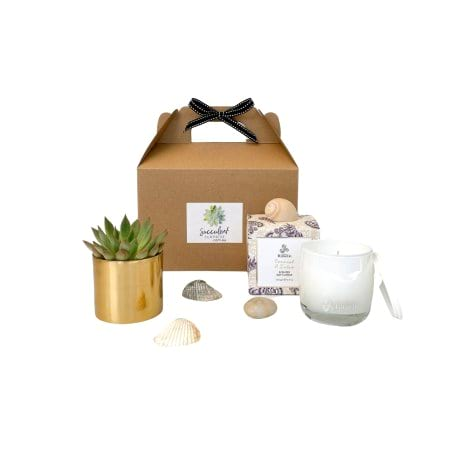 Succulent And Candle Gift Pack (Small) By Succulent Surprise